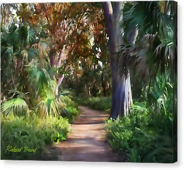 Florida Forest Canvas Print