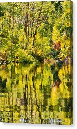 Florida Jungle Canvas Print by Christine Till
