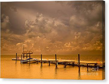 Florida Keys Canvas Print by Bruce Bain