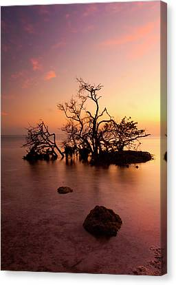 Florida Keys Sunset Canvas Print by Mike  Dawson