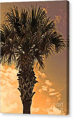 Florida Palm Canvas Print by Melissa Sherbon
