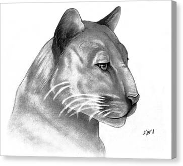 Florida Panther Canvas Print by Kami Catherman