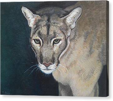 Florida Panther Canvas Print by Sharon Guy