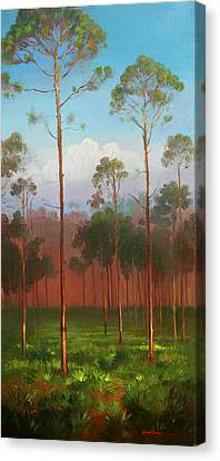 Florida Pines Canvas Print by Keith Gunderson