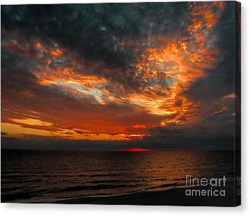 Florida Sunset Canvas Print by Dave Bosse
