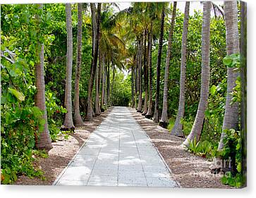 Florida Walkway Canvas Print
