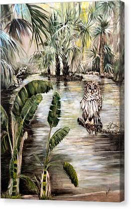 Florida's Barred Owl Canvas Print