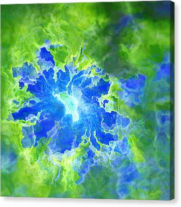 Floro - 26a Canvas Print by Variance Collections