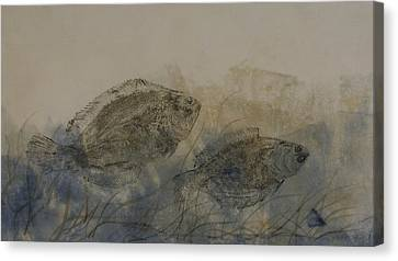 Flounder Duo Canvas Print