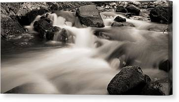 Flow Of The Cascades In Tennessee Canvas Print by Dan Sproul