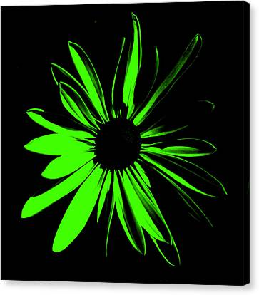 Canvas Print featuring the digital art Flower 12 by Maggy Marsh
