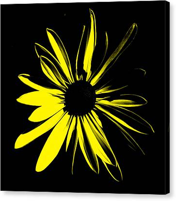 Canvas Print featuring the digital art Flower 8 by Maggy Marsh