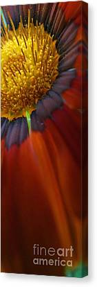 Canvas Print featuring the photograph Flower by Andy Prendy