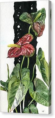 Flower Anthurium 01 Elena Yakubovich Canvas Print by Elena Yakubovich