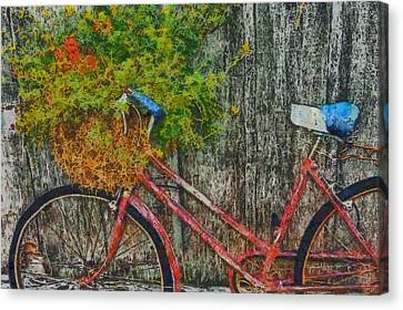 Flower Basket On A Bike Canvas Print by Mark Kiver