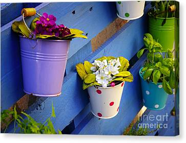 Container Canvas Print - Flower Baskets by Carlos Caetano