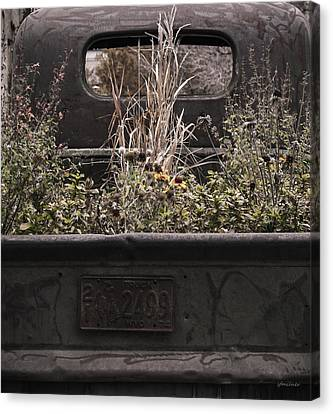 Canvas Print featuring the photograph Flower Bed - Nature And Machine by Steven Milner
