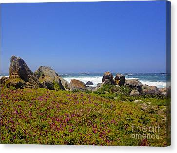 Canvas Print featuring the photograph Flower Bed by Sarah Mullin