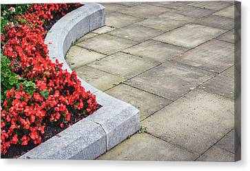 Flower Bed Canvas Print by Tom Gowanlock