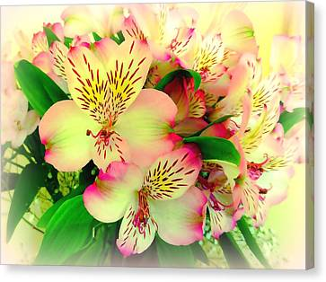 John Tidball Canvas Print - Flower Bouquet In Pink And Yellow by Bishopston Fine Art
