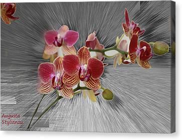 Flower Branch Canvas Print by Augusta Stylianou