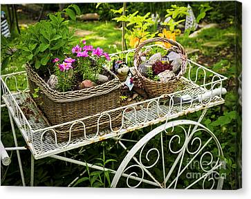 Flower Cart In Garden Canvas Print by Elena Elisseeva