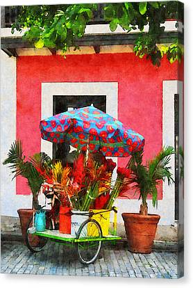 Flower Cart San Juan Puerto Rico Canvas Print by Susan Savad