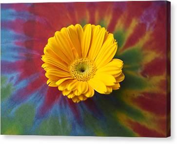 Flower Child Canvas Print by Christi Kraft