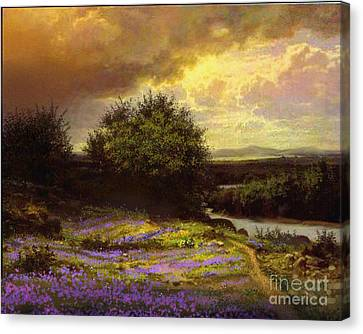 Flower Dell Canvas Print by Robert Foster