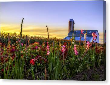 Flower Farm Canvas Print