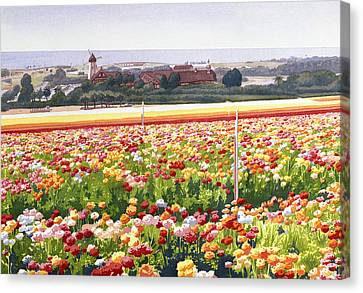 Flower Fields In Carlsbad 1992 Canvas Print by Mary Helmreich