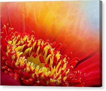 Flower Fragrance Canvas Print by Lutz Baar