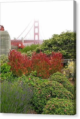 Flower Garden At The Golden Gate Bridge Canvas Print by Connie Fox