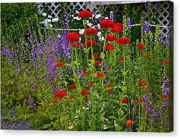 Flower Garden Canvas Print by Johanna Bruwer