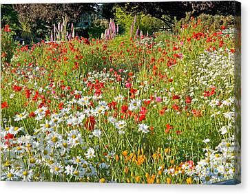 Flower Garden Canvas Print by Richard and Ellen Thane