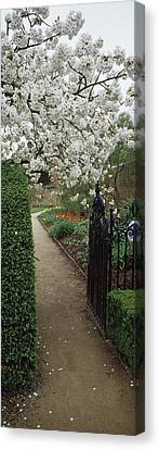 Flower Garden, York, North Yorkshire Canvas Print by Panoramic Images