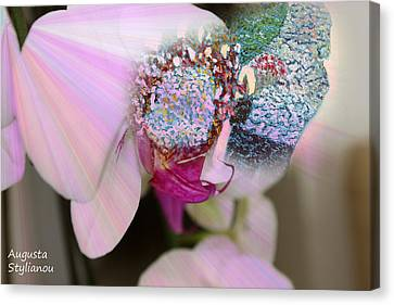 Flower Girl In Orchid Canvas Print by Augusta Stylianou