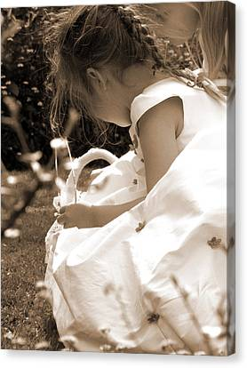 Flower Girls In Sepia Canvas Print by Terri Waters