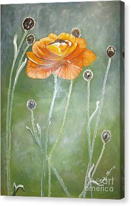 Flower In The Mist Canvas Print by Judy Morris