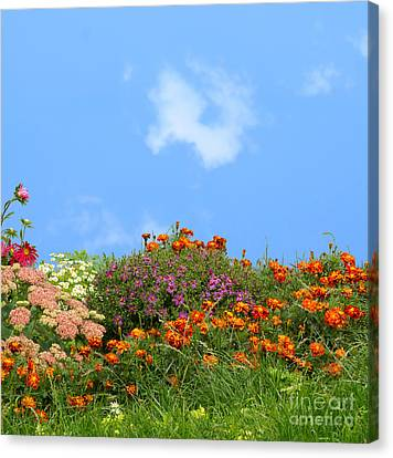 Flower Landscape Art Canvas Print by Boon Mee