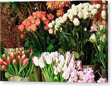 Flower Market Canvas Print by Ann Murphy