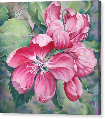 Flower Of Crab-apple Canvas Print by Anna Ewa Miarczynska