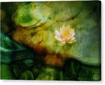 Flower Of Hope Canvas Print by Gun Legler