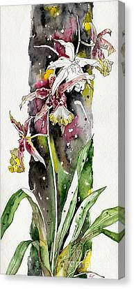 Canvas Print featuring the painting Flower Orchid 03 Elena Yakubovich by Elena Yakubovich