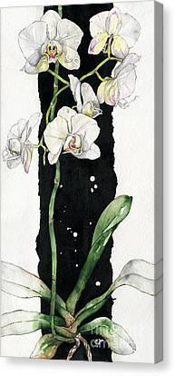 Flower Orchid 05 Elena Yakubovich Canvas Print