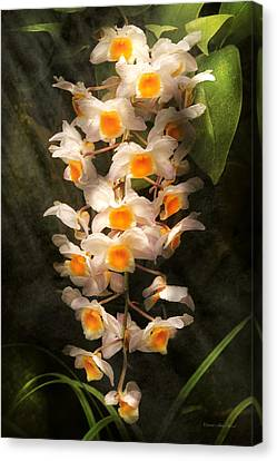 Flower - Orchid - Dendrobium Orchid Canvas Print by Mike Savad