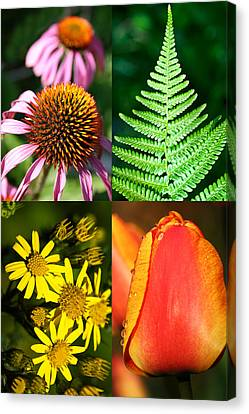 Flower Photo 4 Way Canvas Print by Richard Thomas