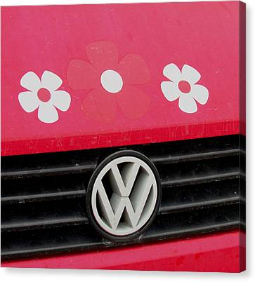 Flower Power Canvas Print by Will Boutin Photos
