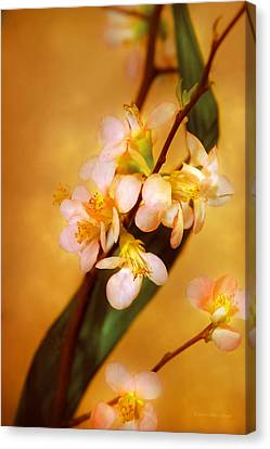 Flower - Sakura - A Touch Of Spring Canvas Print by Mike Savad