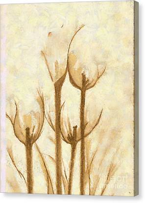Flower Sketch Canvas Print by Yanni Theodorou